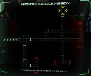 Suicide mission